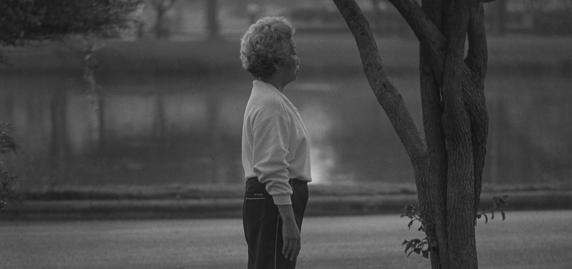 A photo by Roy DeCarava, titled Woman standing, tree, dated 1987.